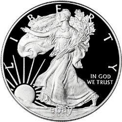 2020-w Américain Silver Eagle Proof Ngc Pf70 Ucam